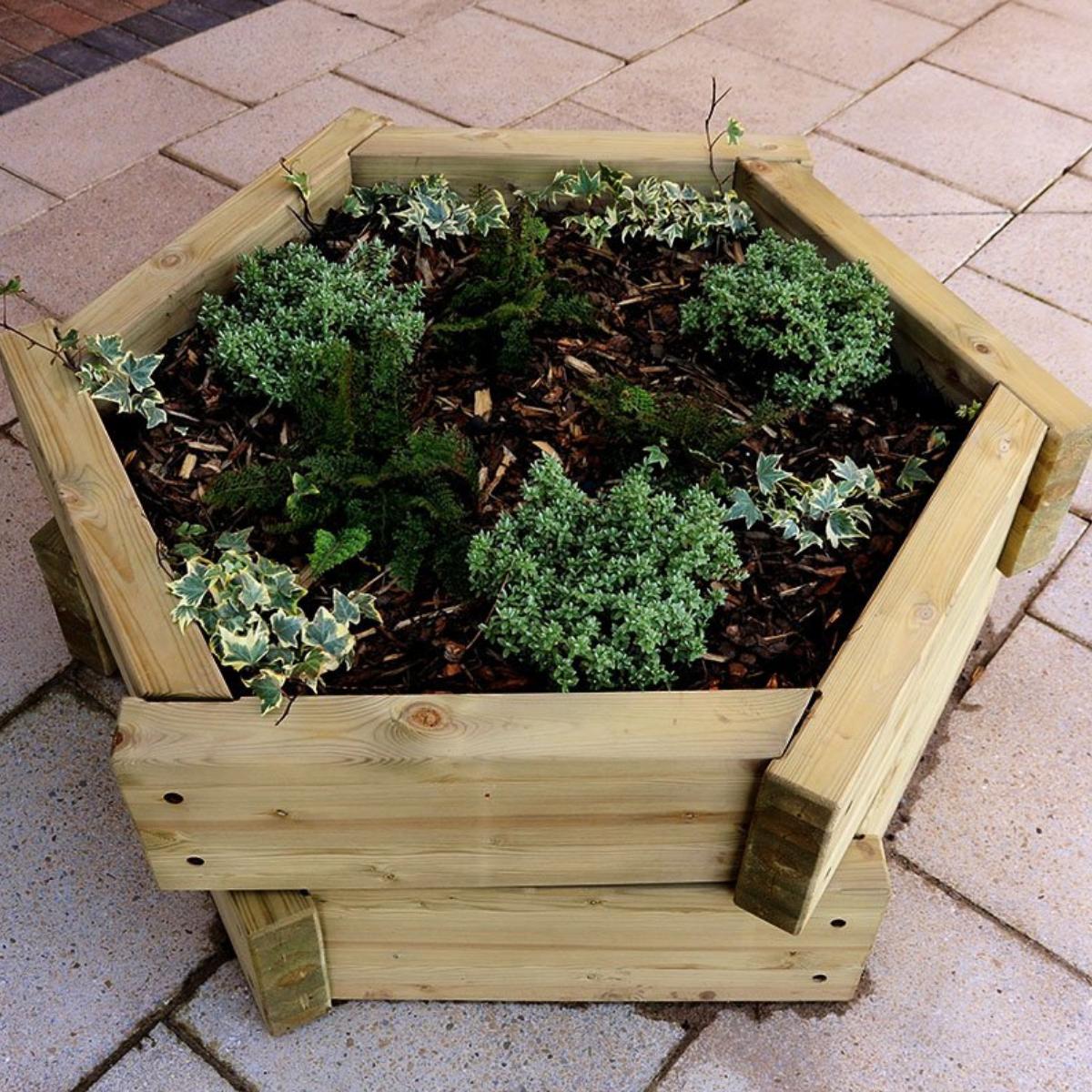 Hexagonal Planter